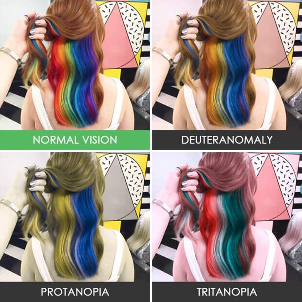 3. Радужные волосы  дальтонизм, люди, мир