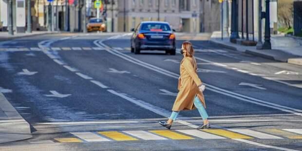 """Сервис с расписанием прогулок для москвичей появился в """"Яндекс.Картах""""/ Фото mos.ru"""