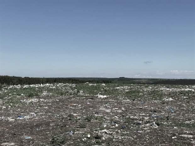 Рекультивацию мусорного полигона под Сарапулом проведут в сентябре