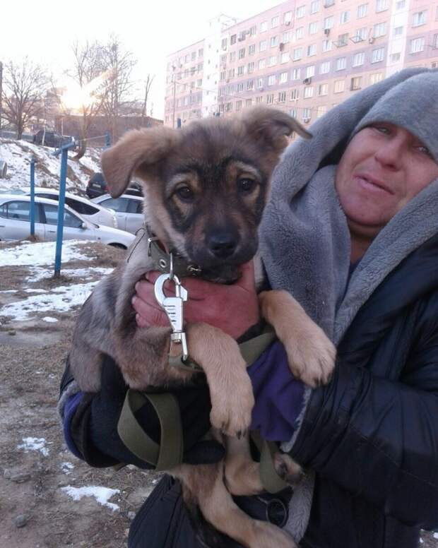 Добро, которое согревает! Бездомная женщина из Уссурийска выкормила брошенного щенка и ищет для него хозяина!