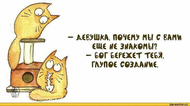 Весёлые открытки для хорошего настроения