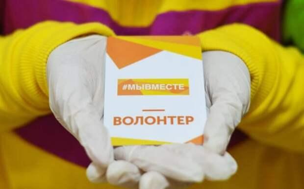 В Крыму количество волонтеров растет с каждым годом, — Андруцкий