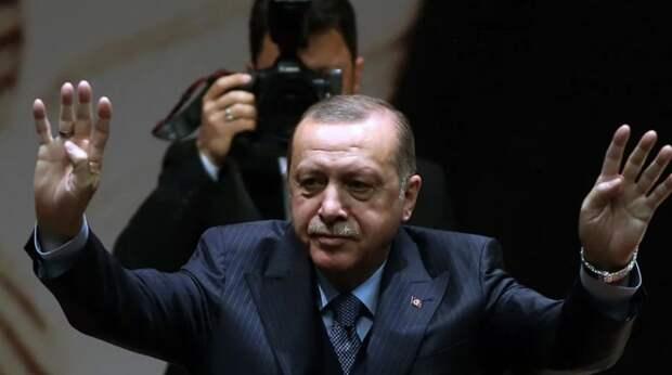 Зачем на самом деле Эрдоган решил поддержать Палестину