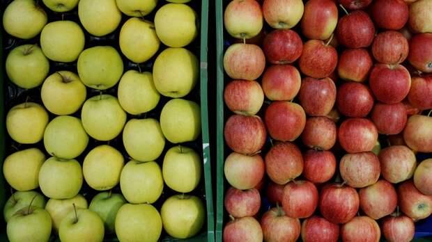 Спустя пять лет польские яблоки гнобят австрийских садоводов