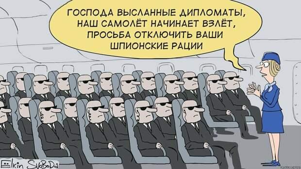 Источник - Сергей Ёлкин
