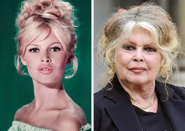 От первой роли до сегодняшних дней: как выглядят известные французские актеры