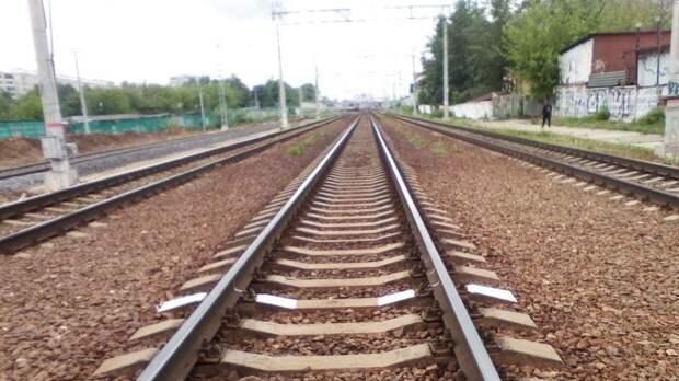 Пожилая жительница Тулы погибла под колесами поезда на перегоне Хомяково