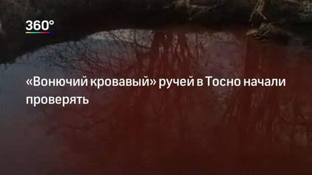 «Вонючий кровавый» ручей в Тосно начали проверять