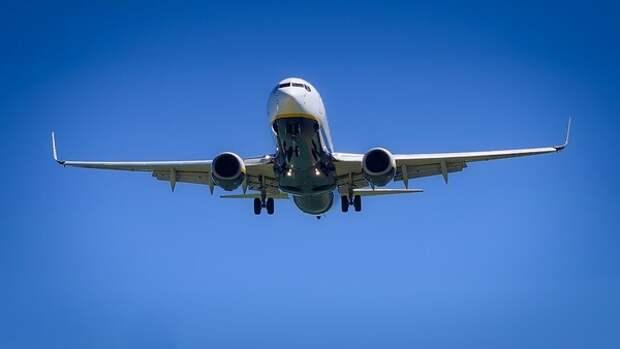Эксперты заявили о снижении смертности из-за авиакатастроф на 50% в 2019 году