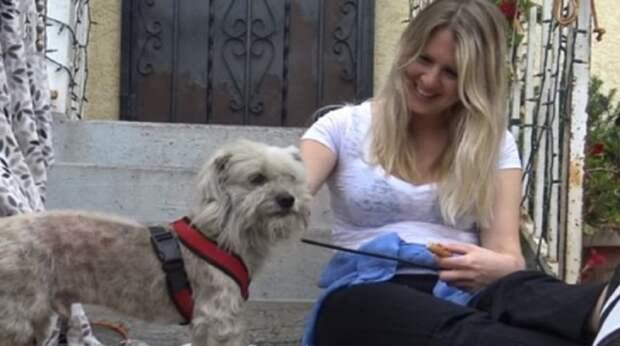 Девочка отдала свой завтрак псу, который боялся довериться людям
