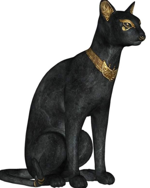 кот египет