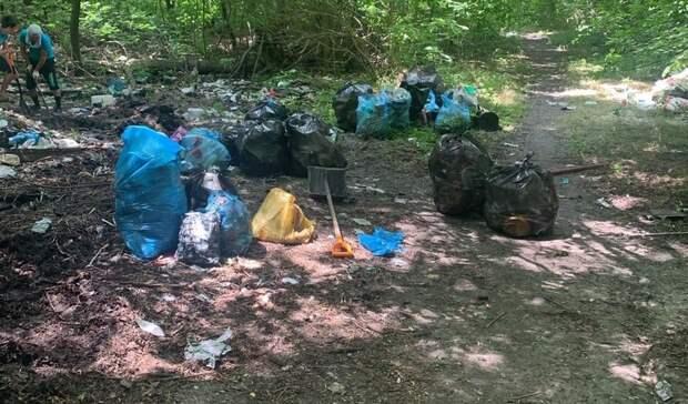 Вывезти мусор сЗеленого острова вРостове обещают до17июня