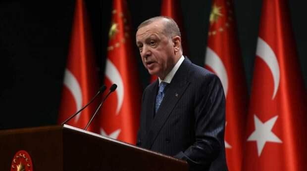 """""""Ужасающее понимание права"""": в Австрии отреагировали на """"проклятие"""" главы Турции"""
