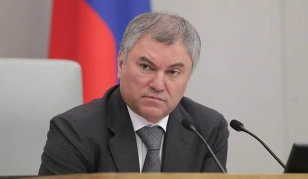 Володин призвал ужесточить наказание за телефонное мошенничество