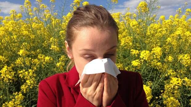 Врач Труфанова раскрыла простые способы побороть весеннюю аллергию