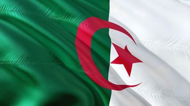 Нарушителям выборов в Алжире дадут тюремный срок