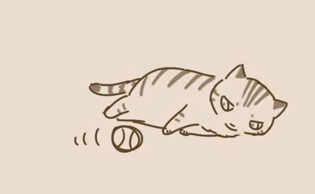 Этот милый комикс с неожиданной концовкой показывает нам кошек с другой стороны