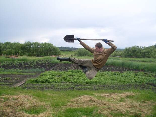 Смешные картинки про огородников (15 фото)