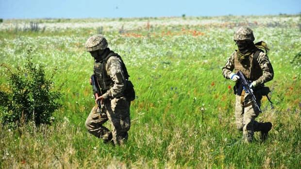 Sohu: Киев не учел «картофельную зависимость» от РФ при переходе на стандарты НАТО