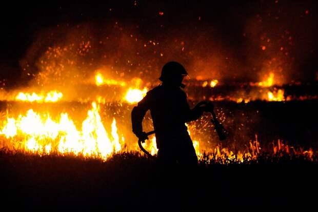 В Удмуртии начались первые природные пожары