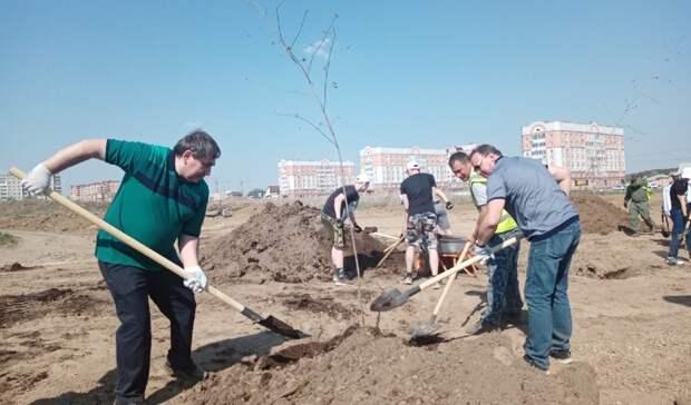 3 тысячи кустов будут высажены осенью вэкопарке наМуринских прудах вНижнем Тагиле