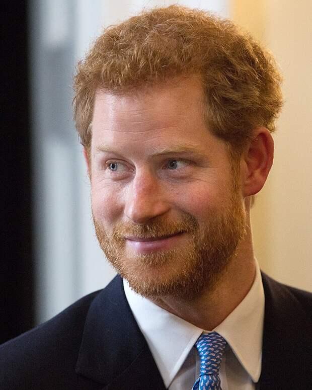 Принц Гарри: «Королевская жизнь — это работа. Улыбайся и терпи»