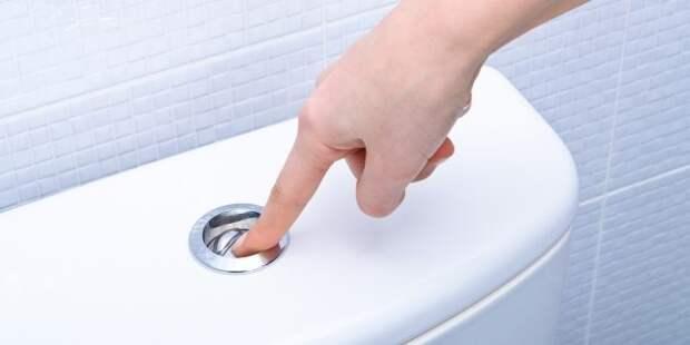 Кнопка слива в туалете