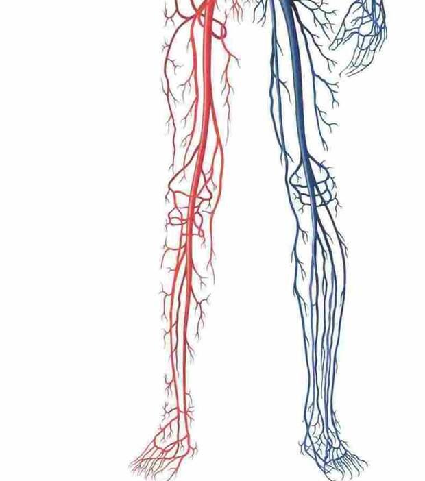 3 простых упражнения от остеопата для снятия отеков ног