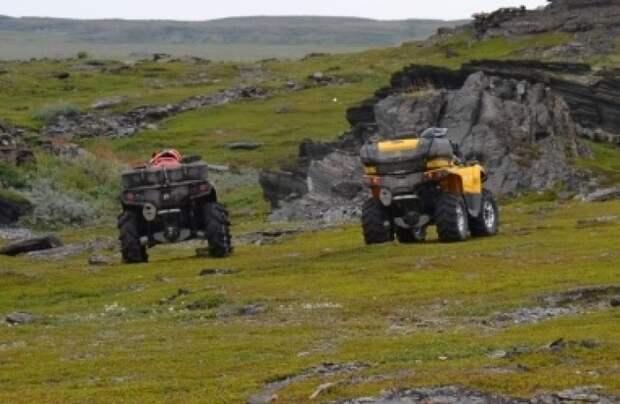 Директор заповедника предупредил о последствиях езды на квадроциклах по лесам