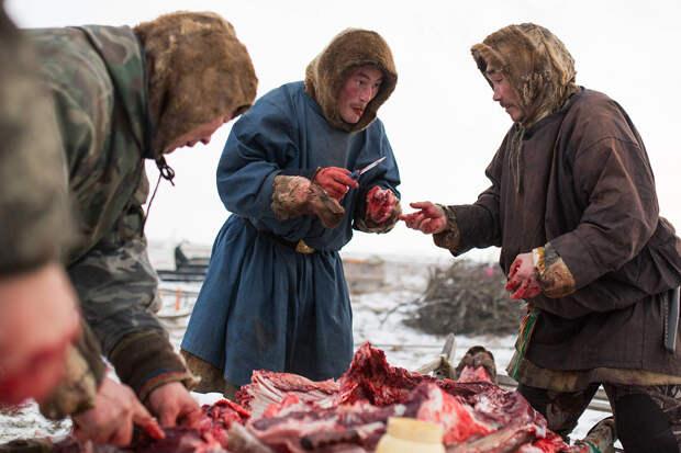 Это смертельное блюдо убивает всех, кроме северян