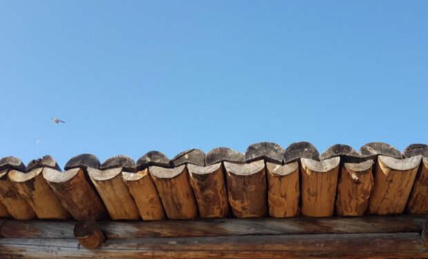 Установка крыши дома на бревна без единого гвоздя. Сибиряки показали, как строили 100 лет назад