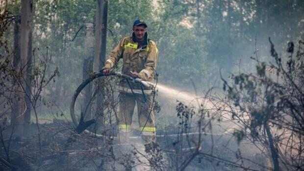 Пожары вТюменской области уничтожили дачные участки