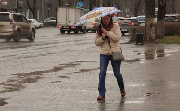 Похолодание и сезон дождей начинаются в Новосибирске с 7 мая