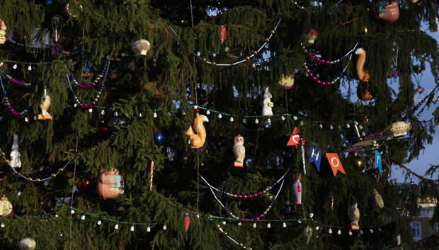 Более 1,6 тысячи новогодних елок установят в Подмосковье