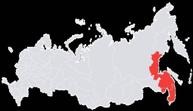 6 насекомых, которые могут испортить путешествие по России