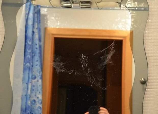С зеркалами одни беды: 12 смешных фото