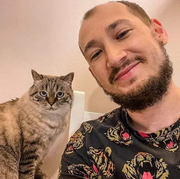 Выбираем наполнитель туалета для кошек