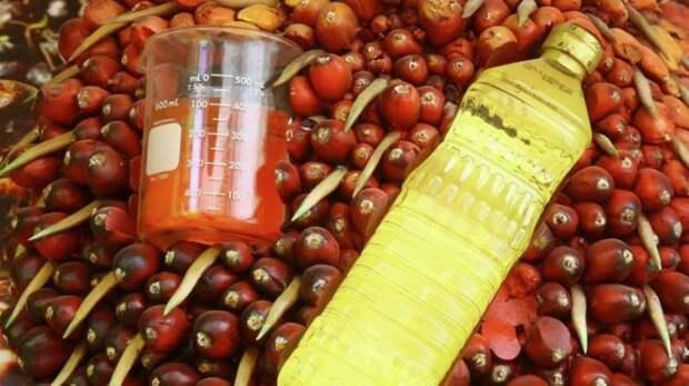 Пальмовое масло – пищевая отрава дорожает вместе с другими продуктами