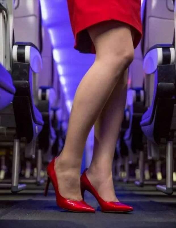Ножки стюардесс. Подборка chert-poberi-styuardessy-chert-poberi-styuardessy-02020717092021-6 картинка chert-poberi-styuardessy-02020717092021-6