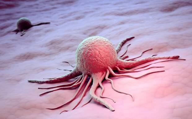 Лоуренс Ле Шан: Рак – это поворотный момент, последнее предупреждение