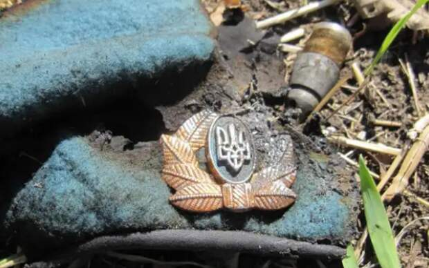 Откровения офицера ВСУ: В войсках бардак, офицеры разделились на три лагеря