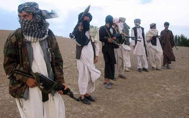В военном бюджете США не найдётся денег на санкции против России за «подкуп талибов»