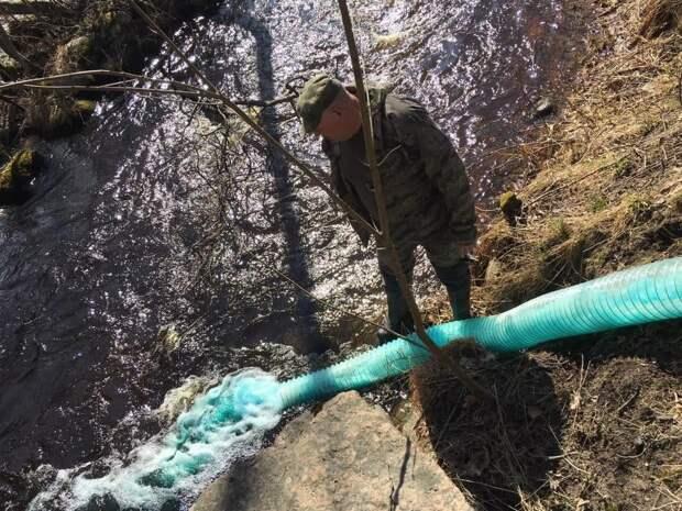 Показываем новых обитателей Гладышевки. Их выпустили в реку, прокатив на водной горке