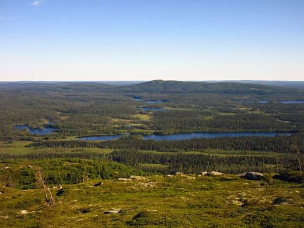 Вид на юг. Озеро Куоринкиярви и гора Уконтунтури (?)