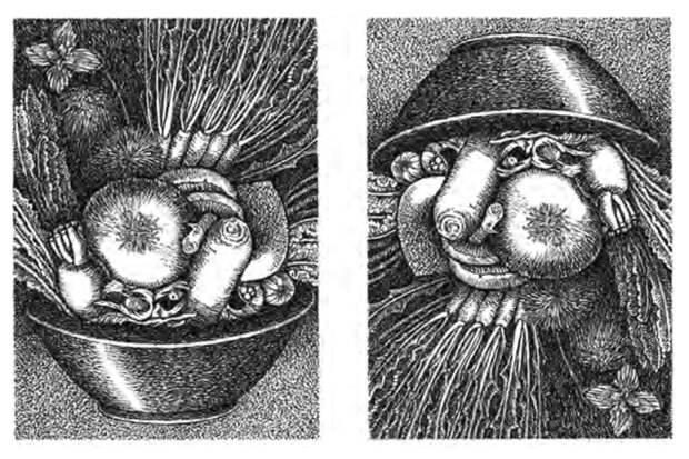 Как мы узнаем лица и как возникают галлюцинации