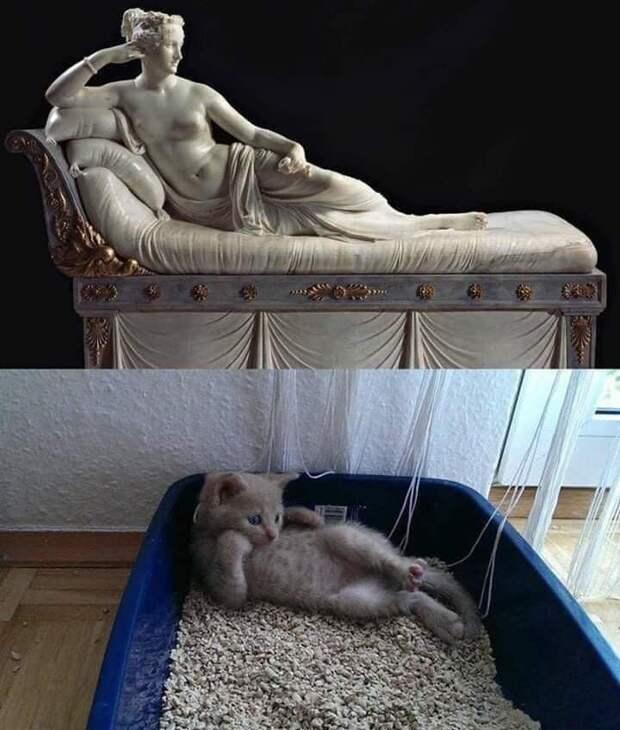- Дорогой! Просыпайся! Просыпайся!...