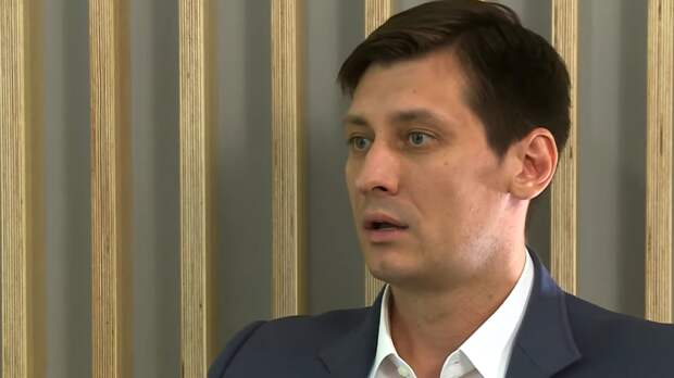 Гудков заявил о планах посетить Болгарию