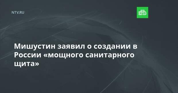 Мишустин заявил о создании в России «мощного санитарного щита»