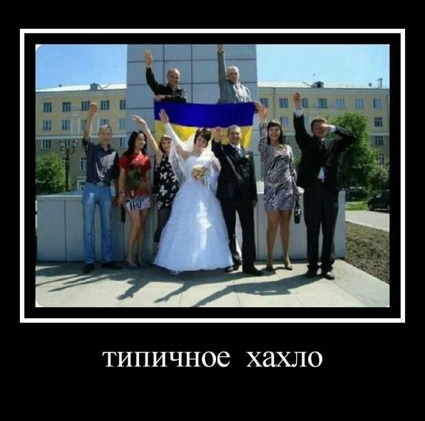 Государственный респект украинскому неонацизму