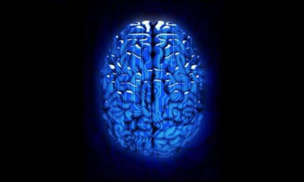 Жидкие мозговые импланты способны увеличить наш интеллект
